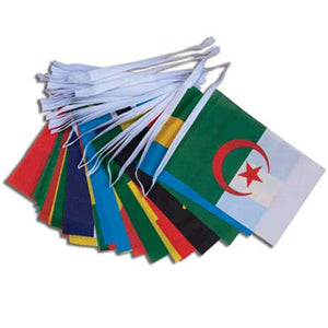 54 African Nations - Flag Bunting