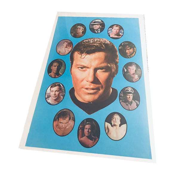 Faces of Kirk Poster