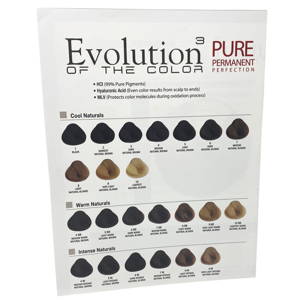 Evolution of the Color Technical Wall Chart