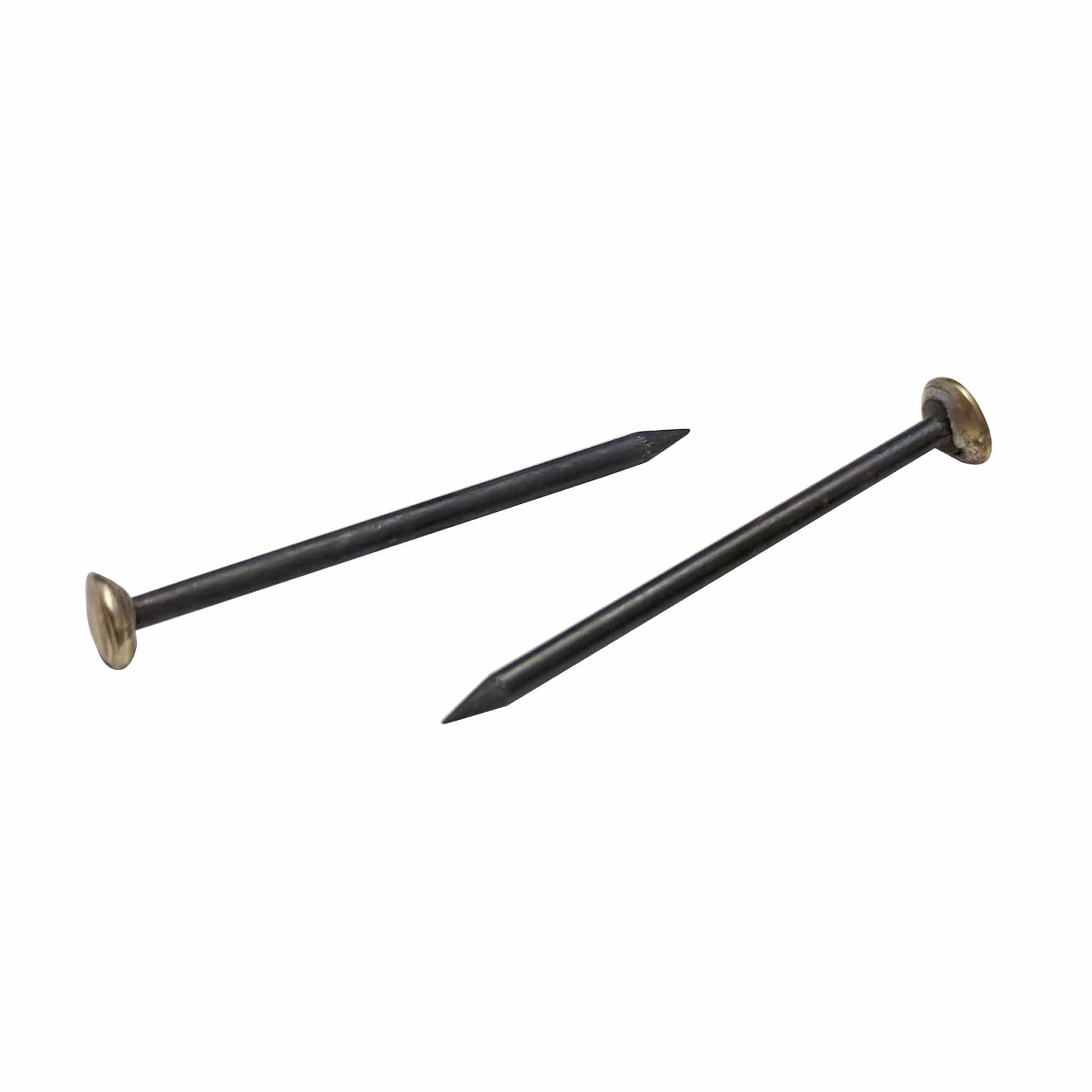 Brass Capped Steel Nails - pack of 100