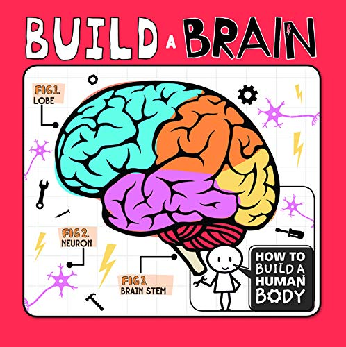 How To Build A Human Body: Build A Brain
