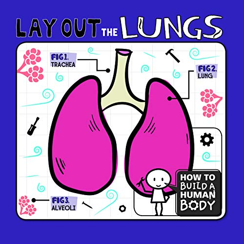 How To Build A Human Body: Lay Out The Lungs