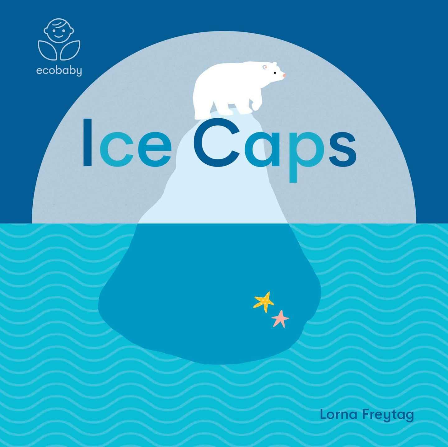 Eco Baby: Ice Caps (Board Book)