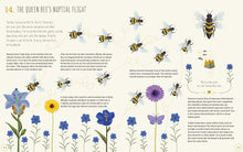 Load image into Gallery viewer, The World of Bees (Hardback)