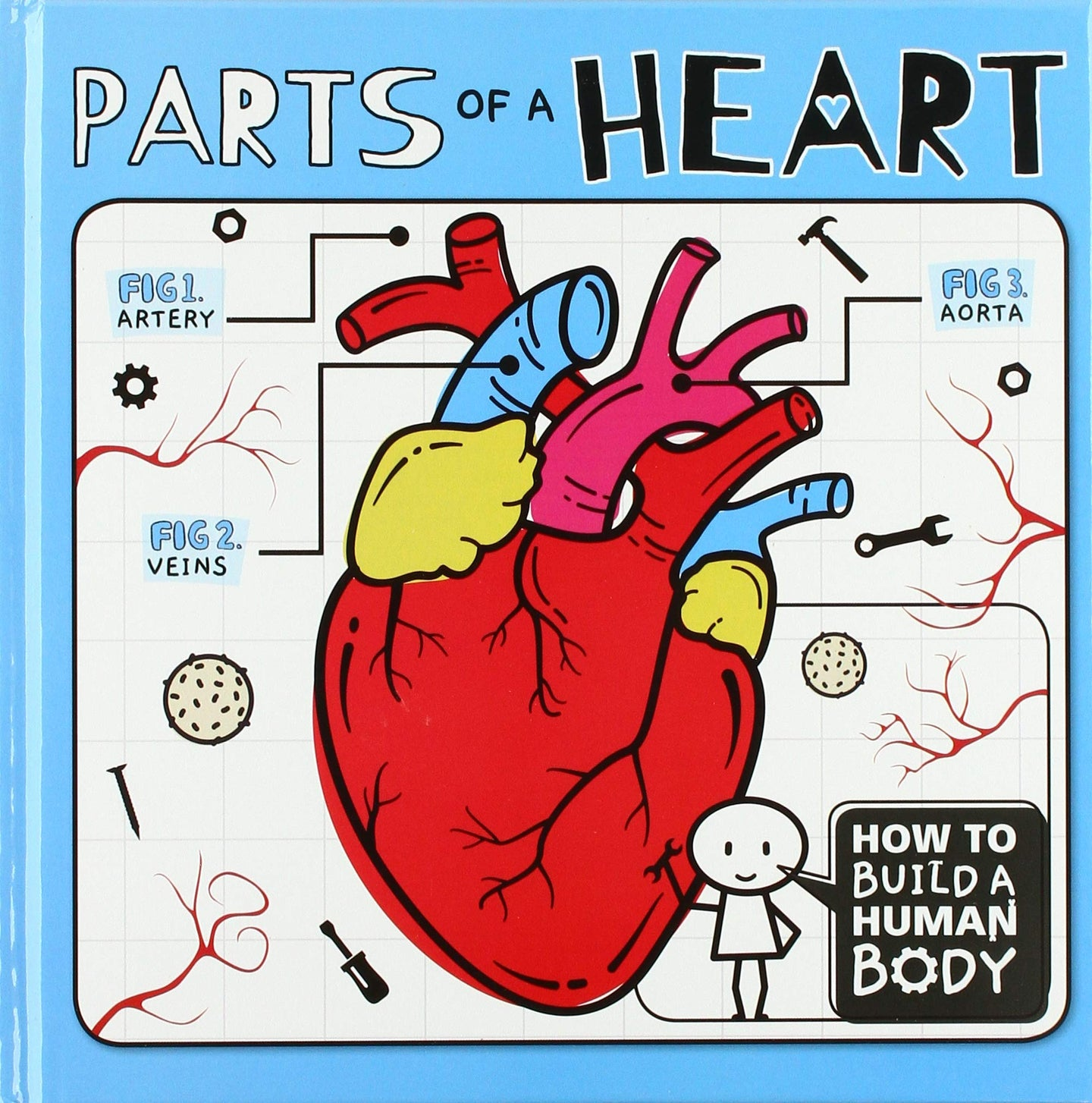How To Build A Human Body: Parts of a Heart
