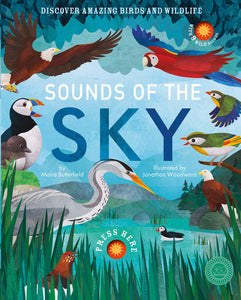 Sounds of the Skies : Discover Amazing Birds and Wildlife (Hardback)