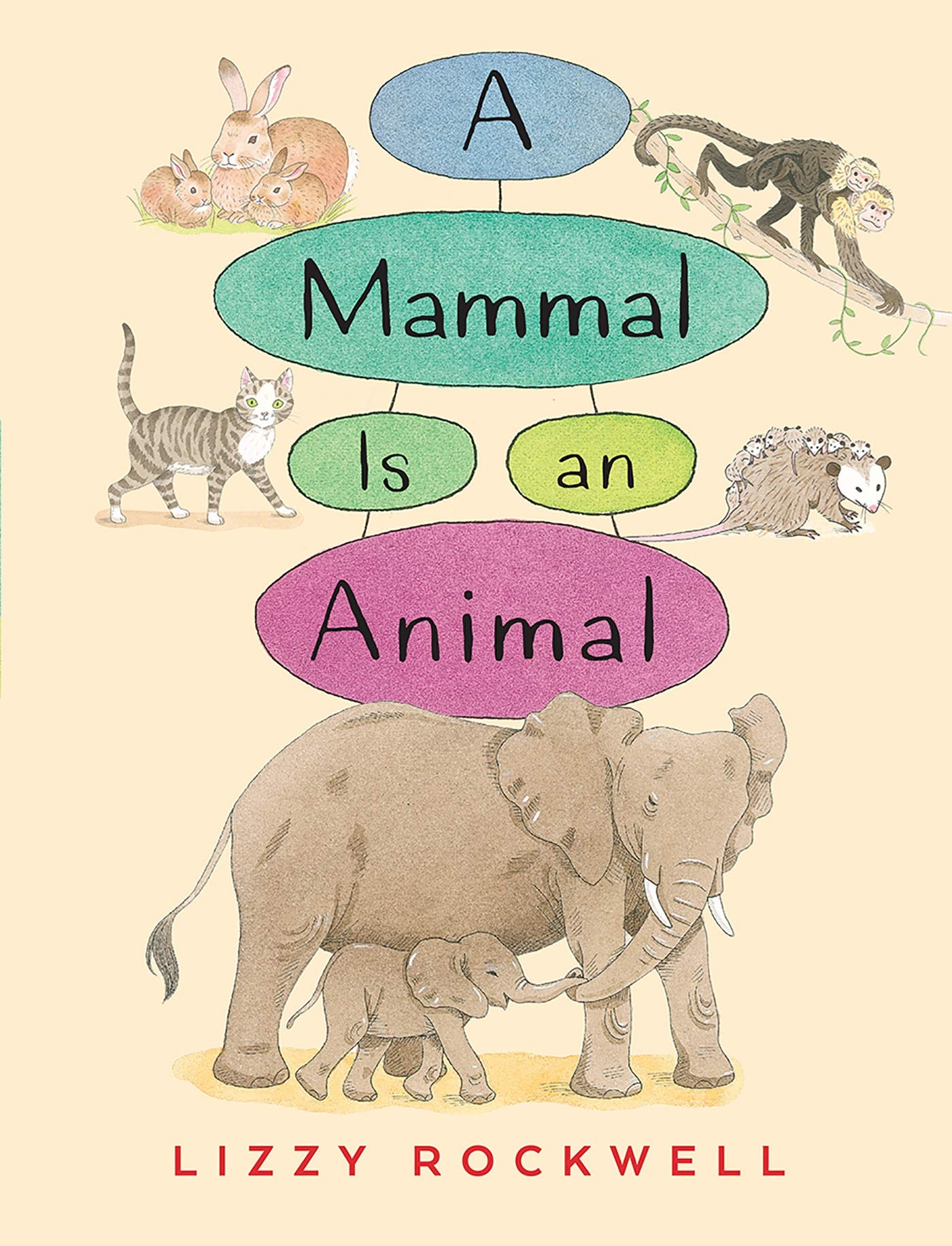 A Mammal is an Animal (Paperback)
