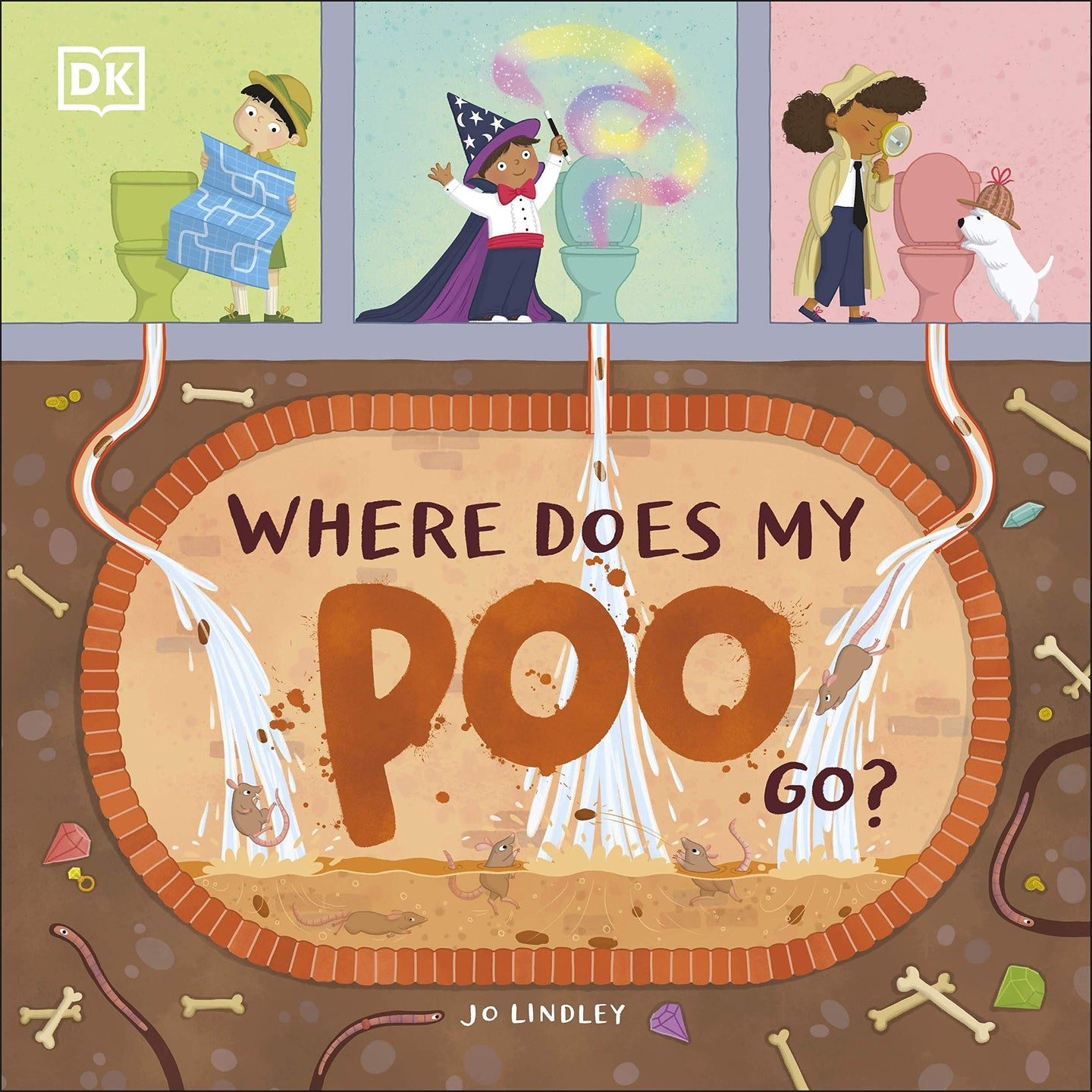 Where Does My Poo Go? (Paperback)