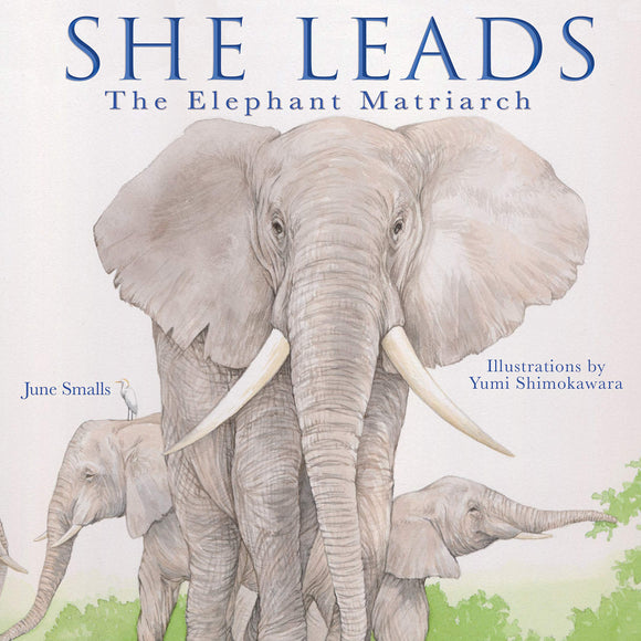 She Leads: The Elephant Matriarch (Hardback)