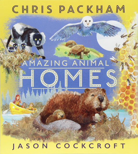 Amazing Animal Homes (Paperback)