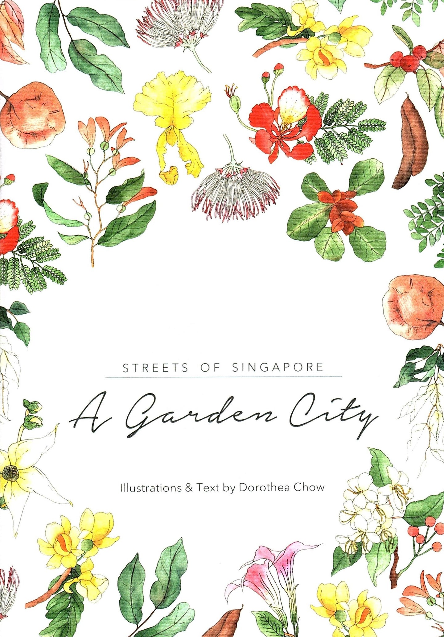 Streets of Singapore: A Garden City (Paperback)
