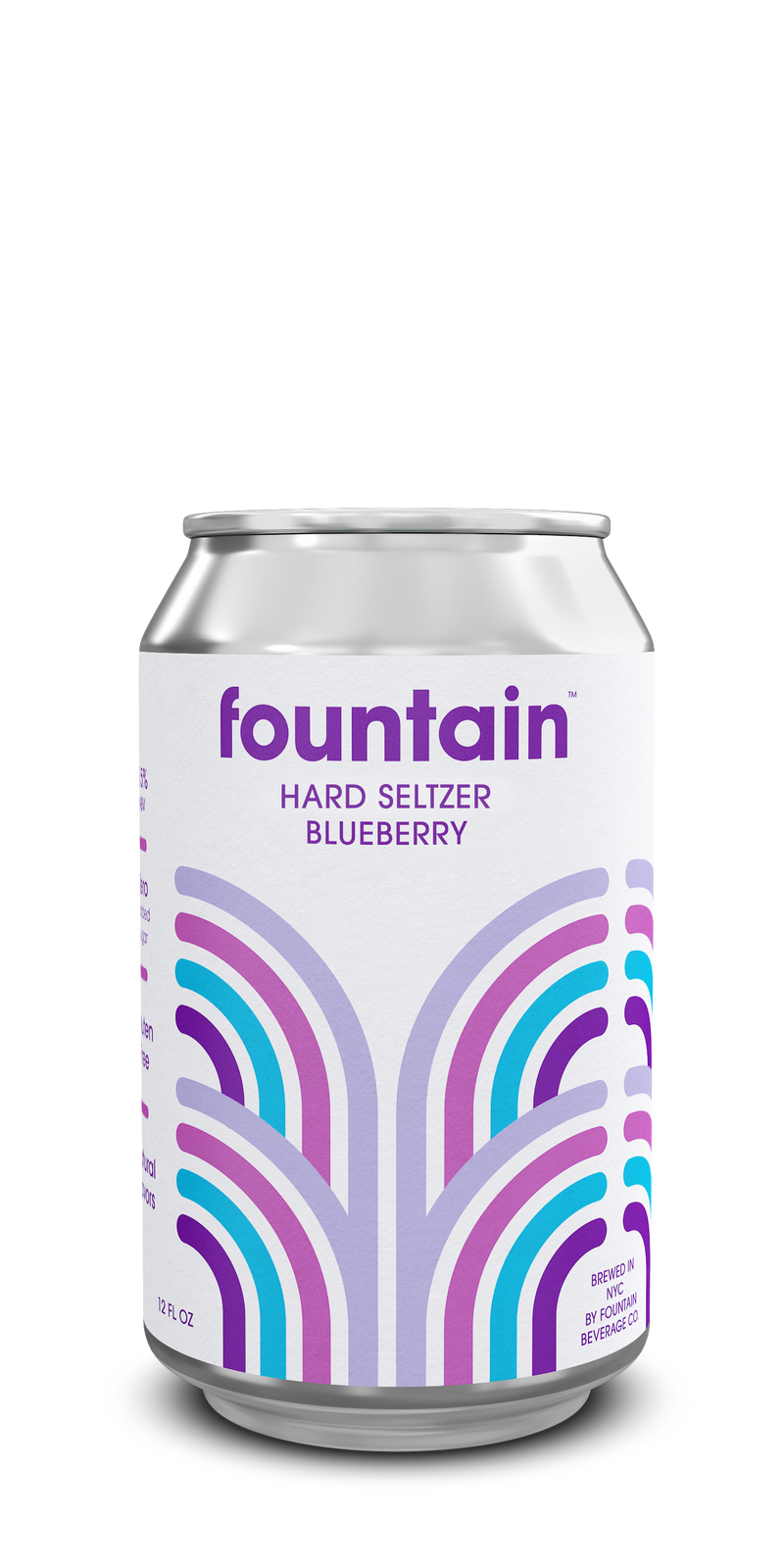 Blueberry Hard Seltzer