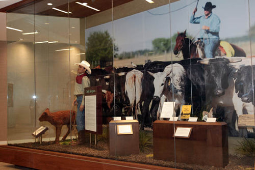 Cattle Keeping Exhibit (1 out of 3), at the Brighton Administration Building of the Seminole Tribe of Florida