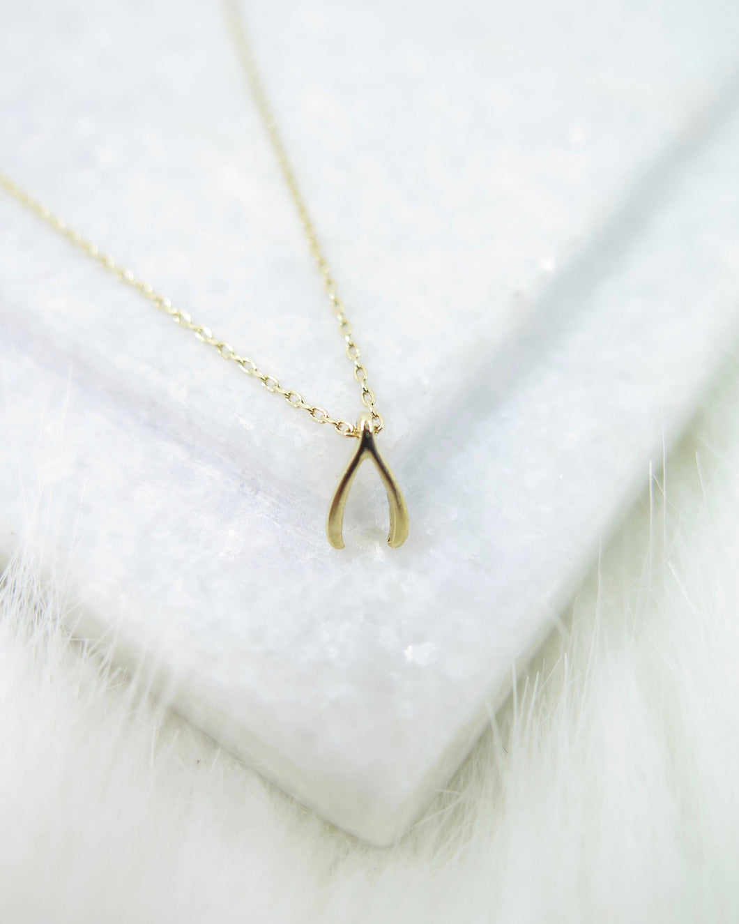 Gold Plated Tiny Wishbone Necklace