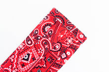 Load image into Gallery viewer, Closeup of face mask Red Paisley print