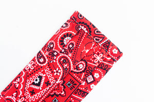 Closeup of face mask Red Paisley print