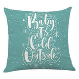Ku-dayi Winter Pillow Cover Winter Snow Throw Pillow for Winter Decor Farmhouse Winter Decorations Decorative Cushion Case for Sofa Couch 18x18 inch (Cold Outside Pillow)