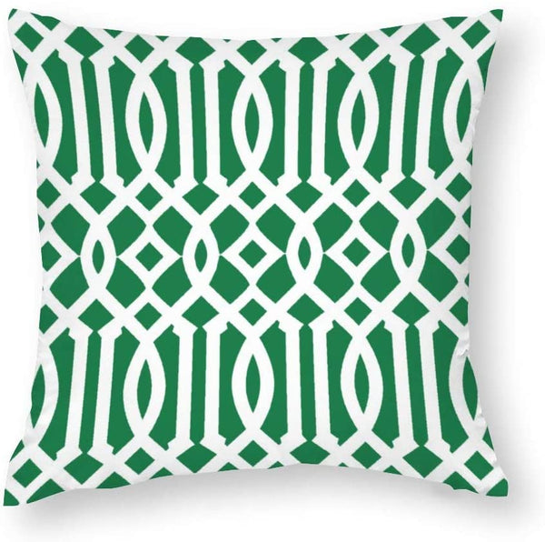 Modern Kelly Green and White Imperial Trellis Throw Pillow Covers Case Cushion Pillowcase with Hidden Zipper Closure for Home Decor 20 x 20 Inches