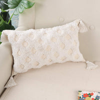 Ailsan Pillow Cushion Cover Lumbar Pillow Cover Neutral Decorative Collection Woven Cotton Tassel Pillow Cases for Home Party Car Office Farmhouse