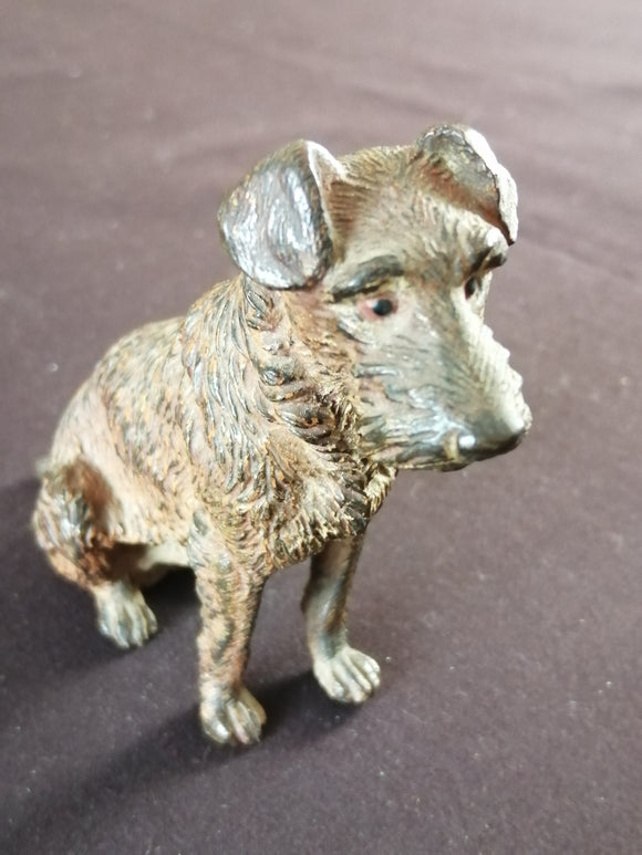 Cold Painted Bronze Dog