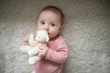 Load image into Gallery viewer, Lila Lamb Pink Soft Toy with Rubber Head