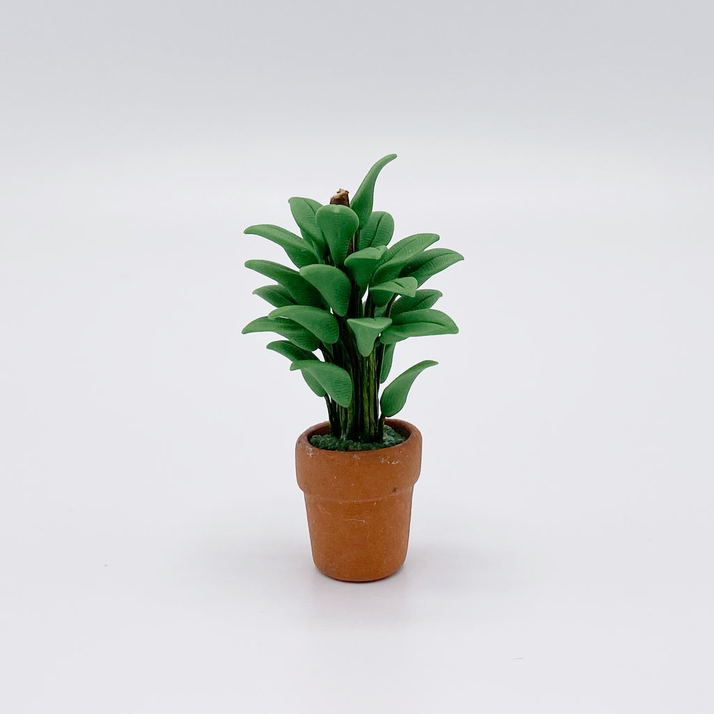 Plant in Terracotta Pot for Dollhouse - Life In A Dollhouse