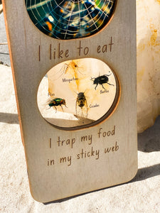 Ecosystem Information Boards - Orb Spider