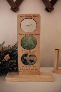 Timber Stand for Ecosystem Info Boards
