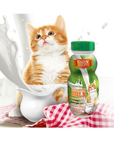 Cindy's Recipe Lactose Free Kitten Milk | Waggymeal Online Pet Store Malaysia