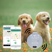 Load image into Gallery viewer, WaggyTag Smart Tracker Pet Tag