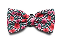 Load image into Gallery viewer, ZeeDog Bow Tie Mahalo