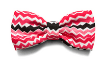 Load image into Gallery viewer, ZeeDog Bow Tie Maui