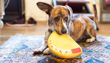 Load image into Gallery viewer, PrideBites Taco Dog Toy | Waggymeal Online Pet Store