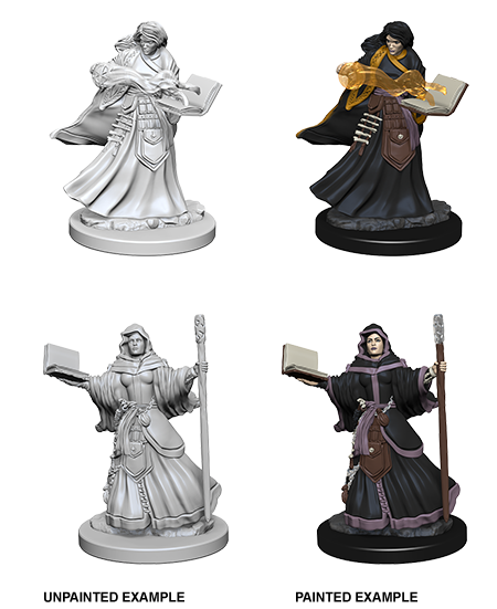 Unpainted Minis: W01: D&D: Human Female Wizard | Misty Mountain Games