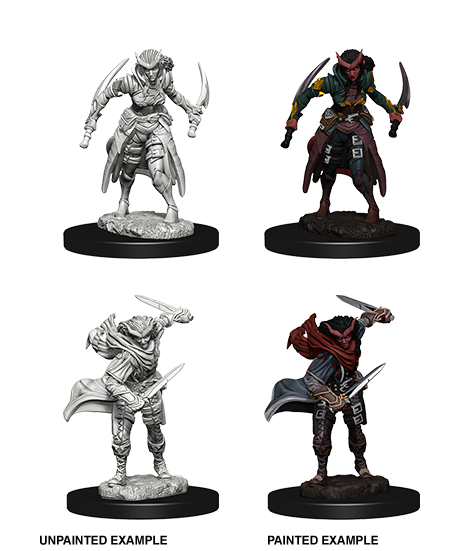 Unpainted Minis: W07: D&D: Tiefling Female Rogue | Misty Mountain Games