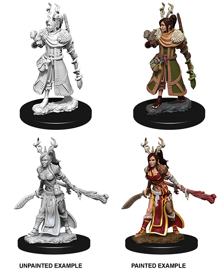 Unpainted Minis: W09: D&D: Human Female Druid | Misty Mountain Games