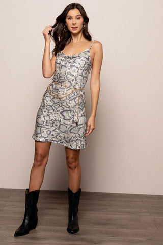 Slithering Snake Dress in Multicolor