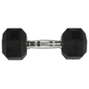 Hex Rubber Dumbbells (Pairs)