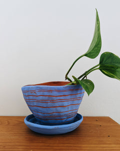 Horizon Variation Table Planter in Blue & Red Terracotta with Cactus