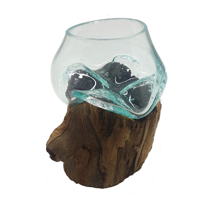 Vie Naturals Molten Glass Terrarium on Balanese Gamal Wood, Bowl, 10cm Height