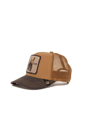 Brown kids cap with a bear cub on and Cub text