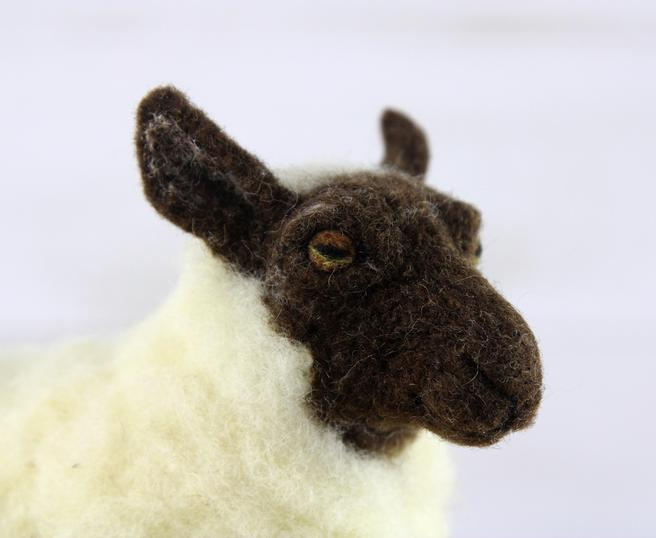 Sheldon the Sheep   Needle Felting Kit