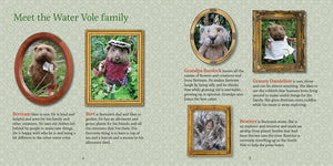 Celestine and the Hare Gift Set - 'Bertram Likes to Sew' Story Book and Polar Bear Colours Felting Pack