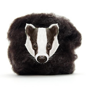 Carded Corriedale Slivers   Badger