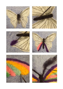 BEGINNER'S  2D Needle Felted Buttterfly Picture Kit