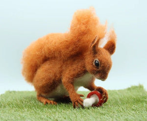 Solly The Squirrel Needle Felting Kit