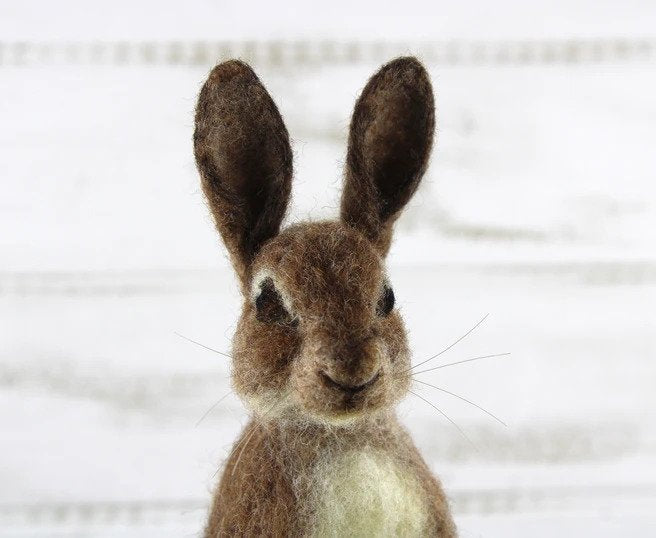 Romeo the Rabbit    Needle Felting Kit