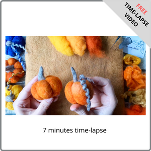 Pumpkin - Free Time-Lapse Video by The Lady Moth