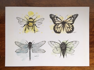 The A3 watercolour bug quad