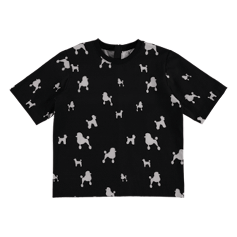 Proteine 06 Shirt ▲ Poodle